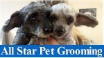 All Star Pet Grooming